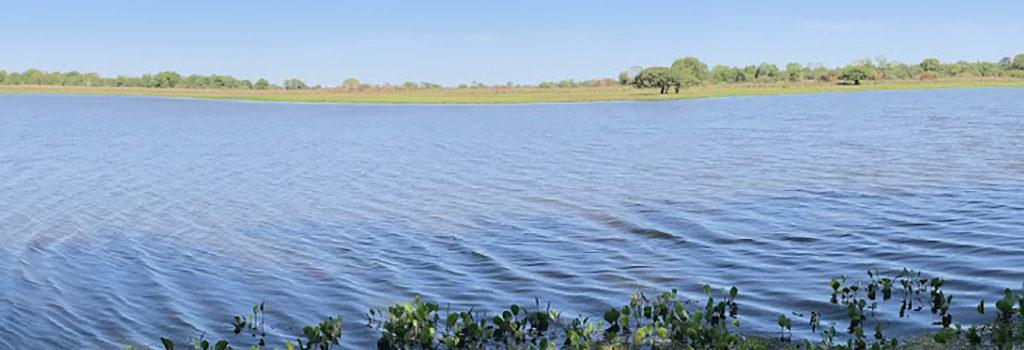 expedicao-pantanal