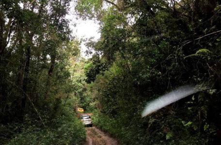 passeio-serra-da-bocaina-keeptrack (8)