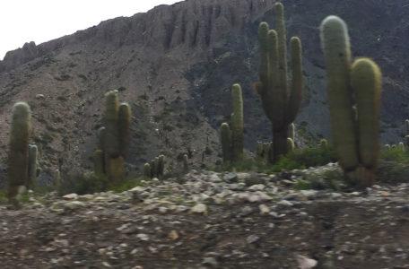 Expedicao-Atacama (32)
