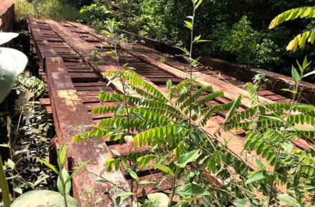 expedicao-amazonia-keeptrack (39)