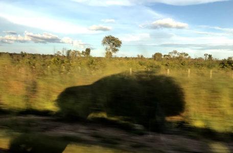 expedicao-amazonia-keeptrack (6)