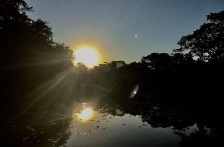 expedicao-pantanal-2019 (31)