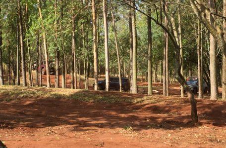 treinamento-keeptrack-jeep-divena (11)