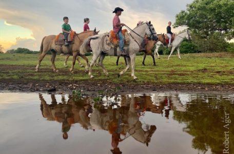 expedicao-pantanal-keep-track-gaia (16)