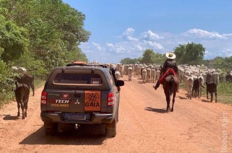expedicao-pantanal-keep-track-gaia (34)