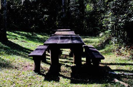 Track Cunha 4×4