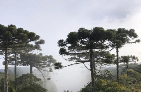 expedicao-gaia-vale-europeu (1)
